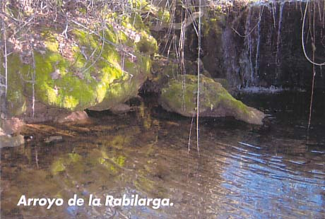 Arroyo Rabilarga
