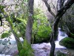Rio Majaceite 2