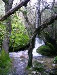 Rio Majaceite 3