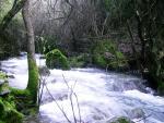 Rio Majaceite 4