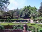Jardines de Narváez