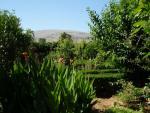 Jardines de Narváez con la Sierra de Loja al fondo
